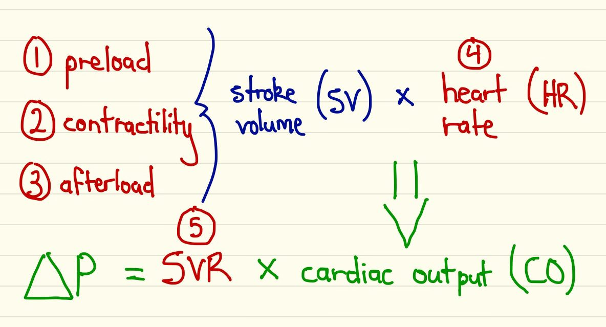 Oxygen Delivery Equation
